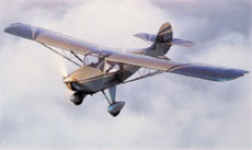 Avid Flyer and Amphibian